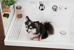 小型犬のシャワーがラクになる 洗面化粧台